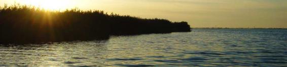 The lake of Massaciuccoli