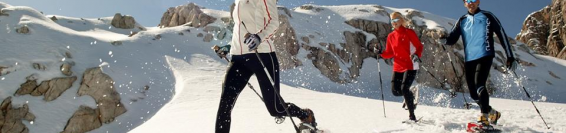Nordic Walking & Snow Trekking