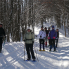 Snowtrek and Aventure in Nordic Walking Style