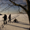 INTO THE WILD – escursioni per scoprire la natura incontaminata in Toscana