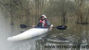 Kayak nel Bosco